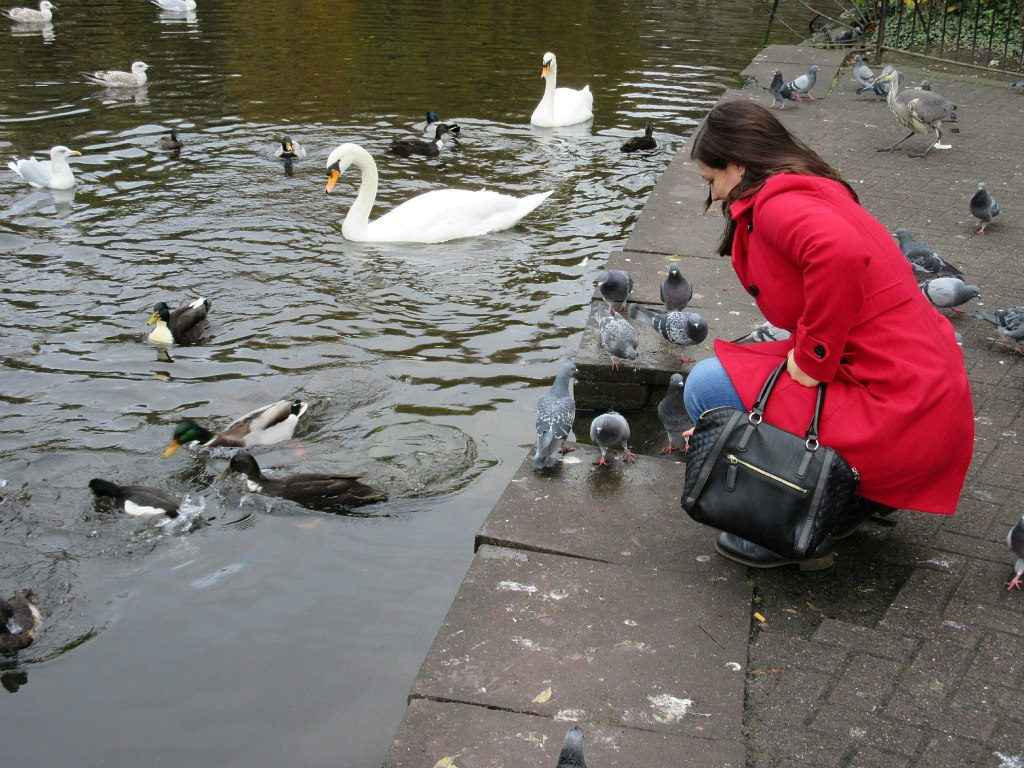 st-stephens-green-elisa